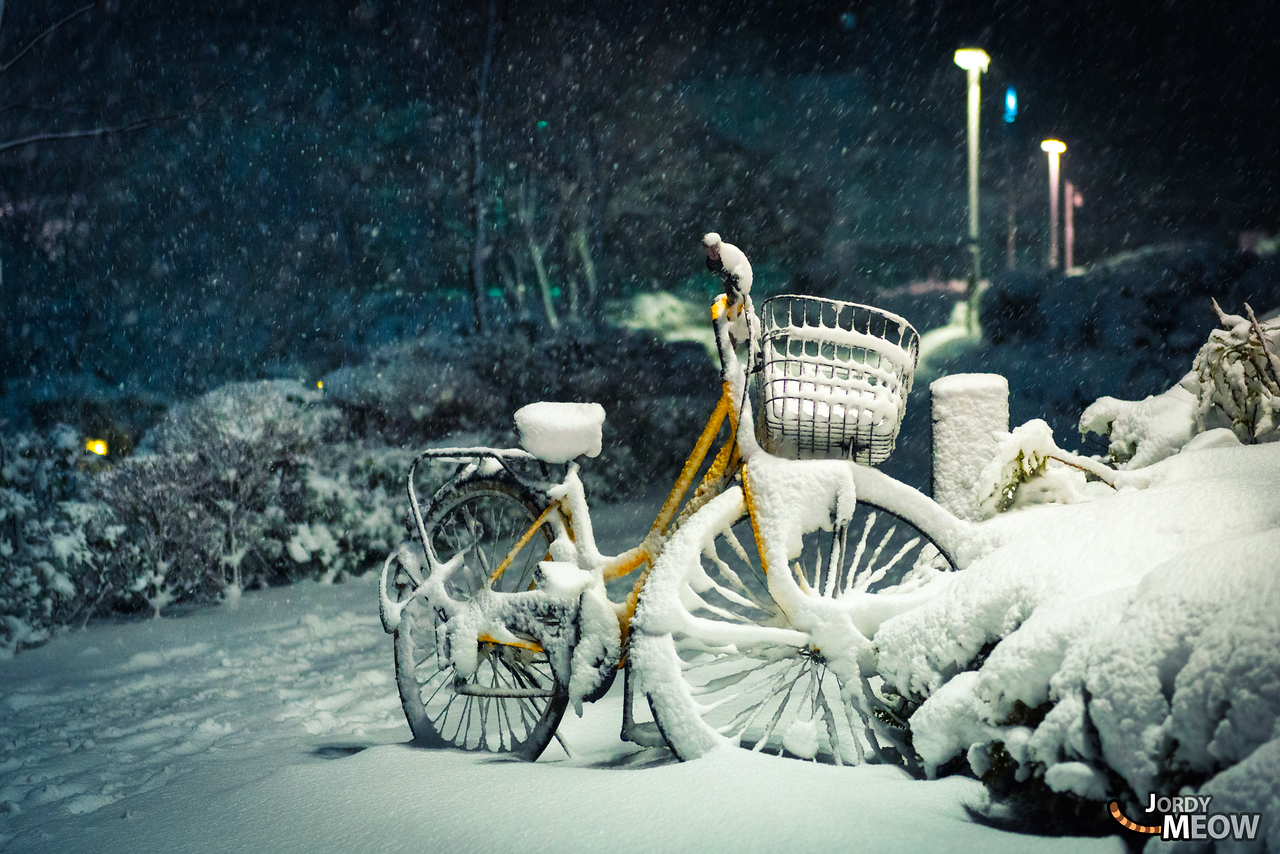 Cotton Bicycle
