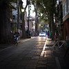 Keyakinamiki Street