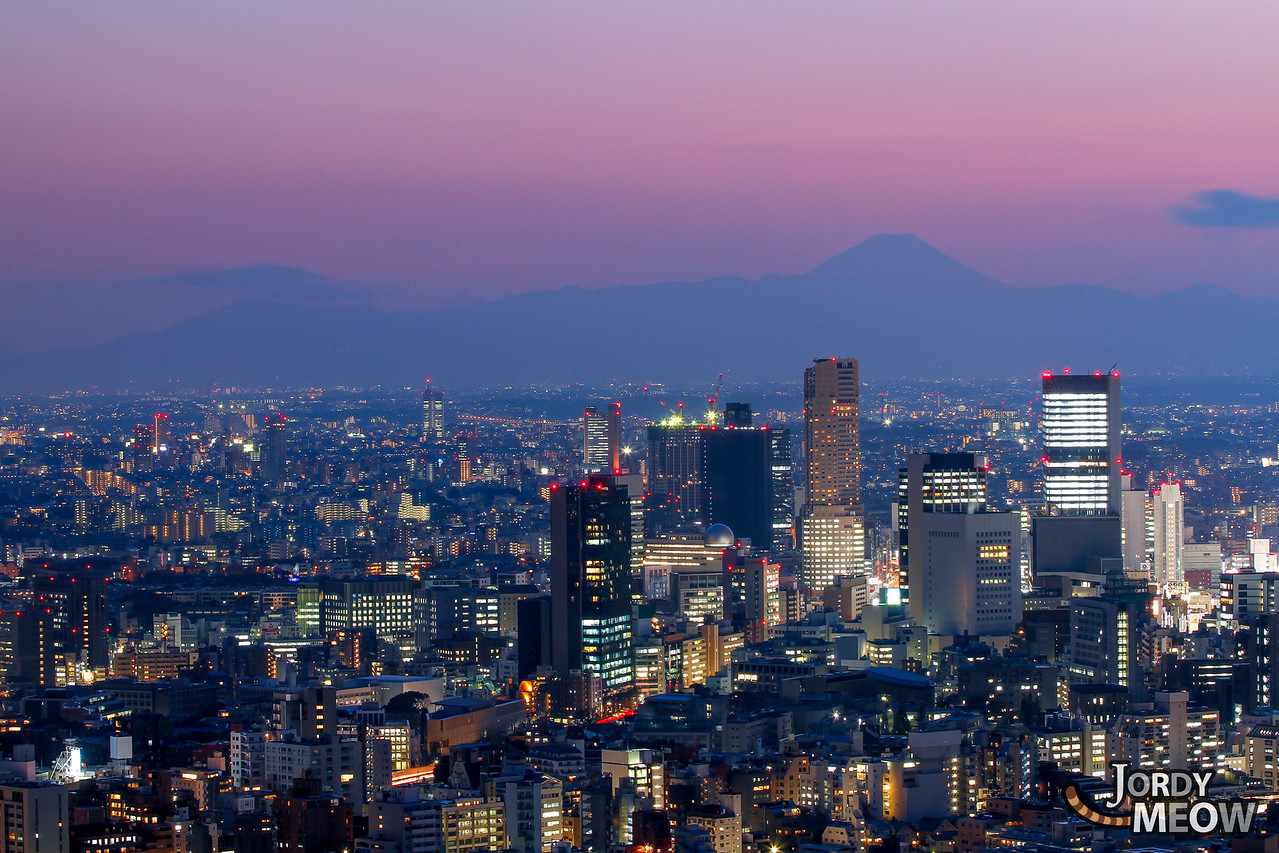 Fuji-san & Tokyo Skyline