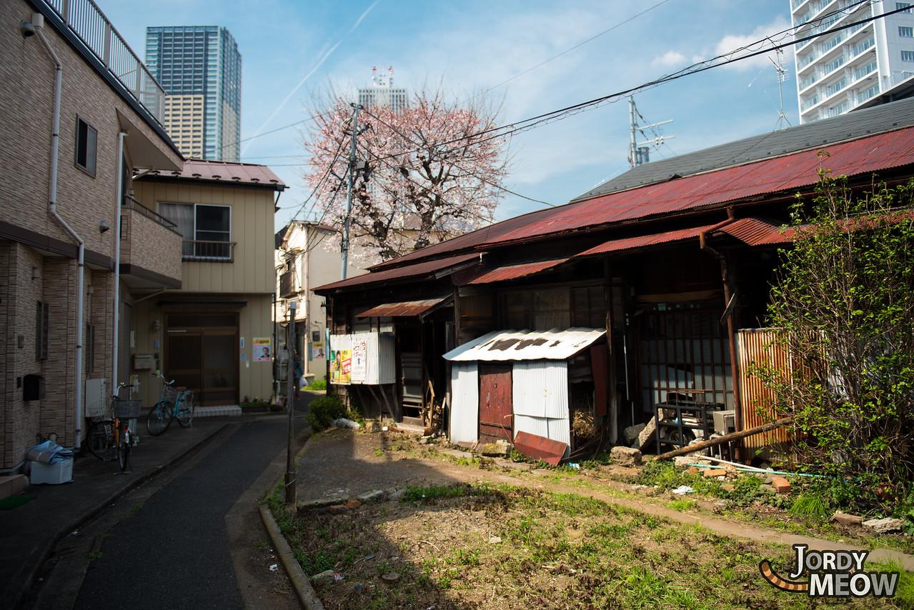 Walking the Arakawa Line