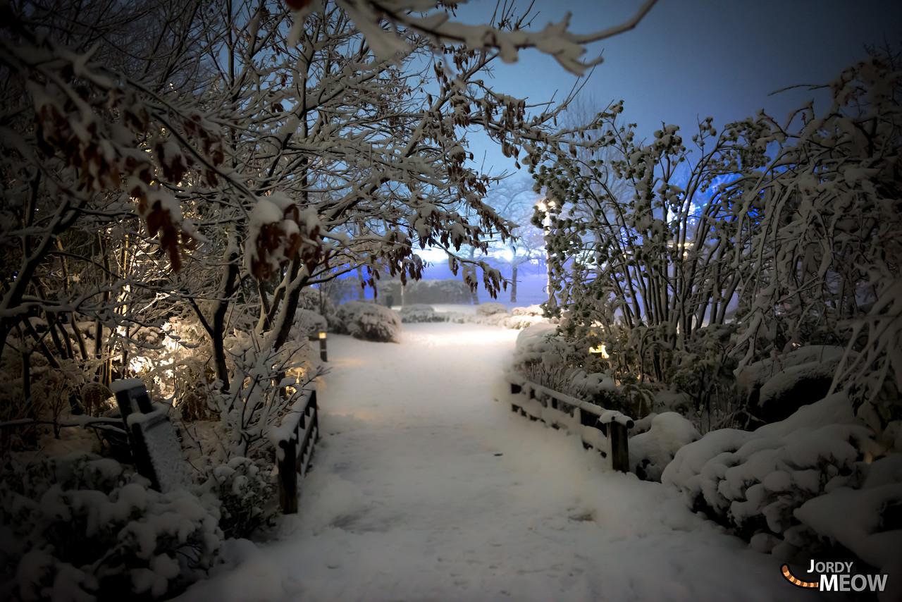 Hinokich'snow