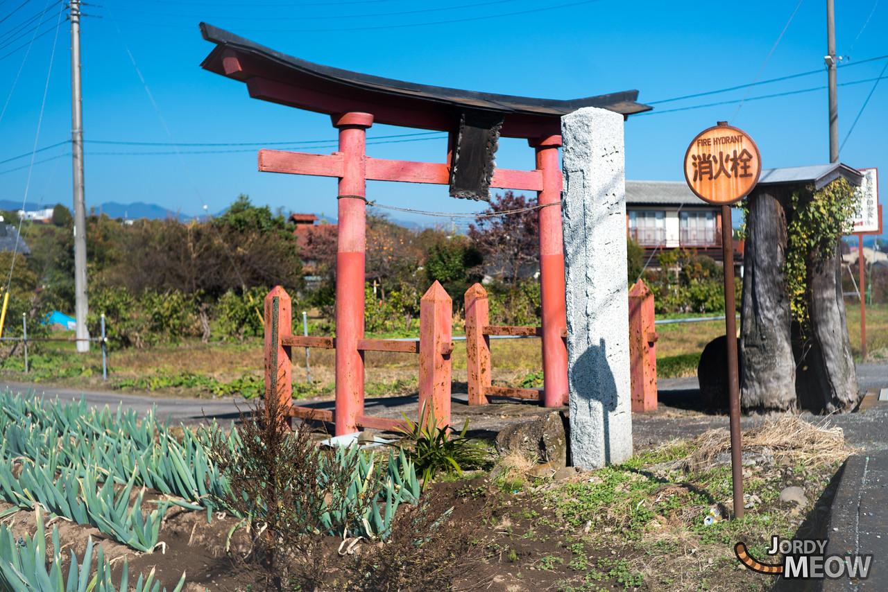 Isobe Shrine (礒部神社)