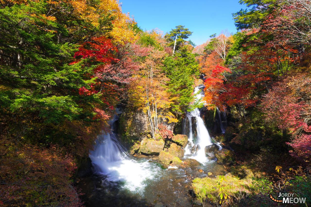 Autumn & Falls