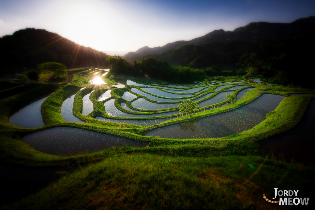 Rice Terraces of Oyama