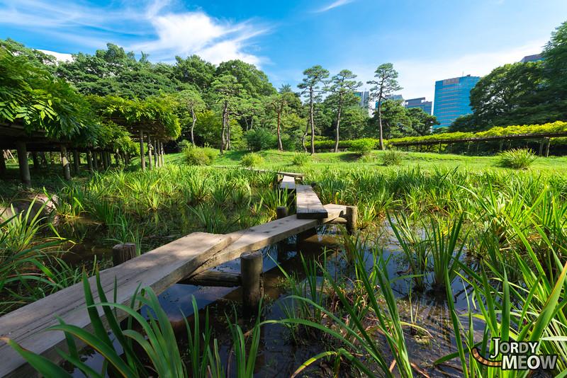 Koishikawa Kōrakuen Garden