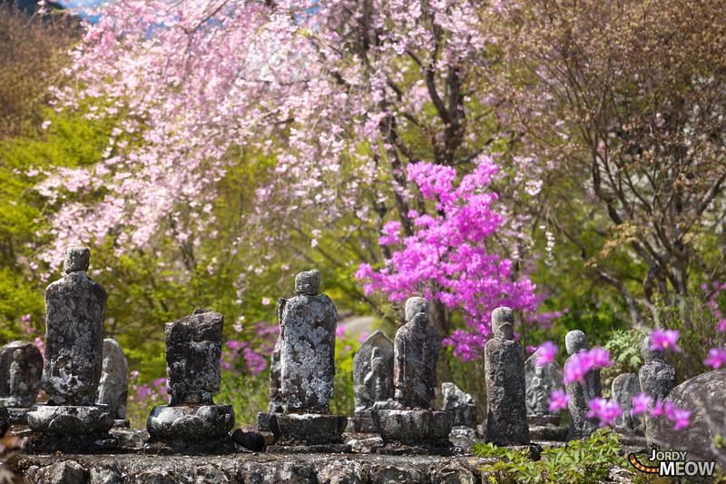 Ryushu-in (龍珠院)
