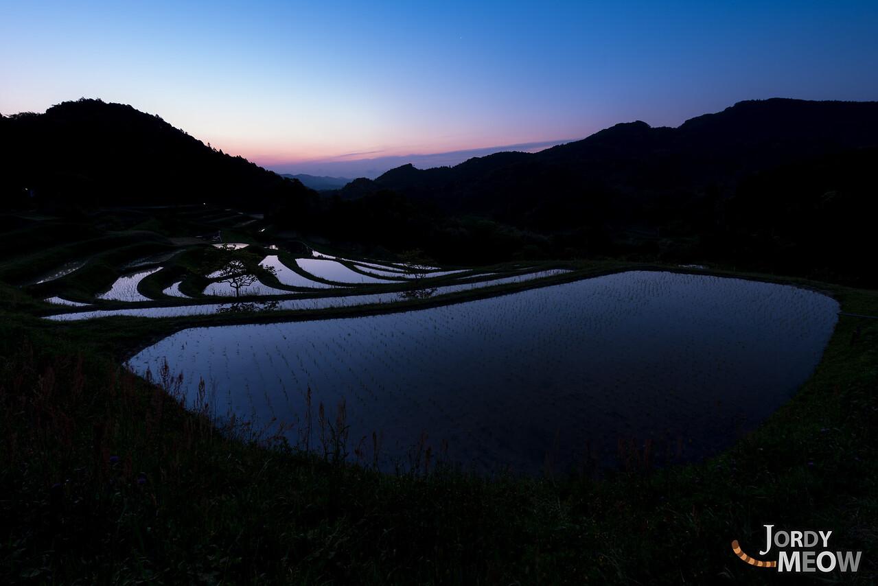 Shizuka Rise Field