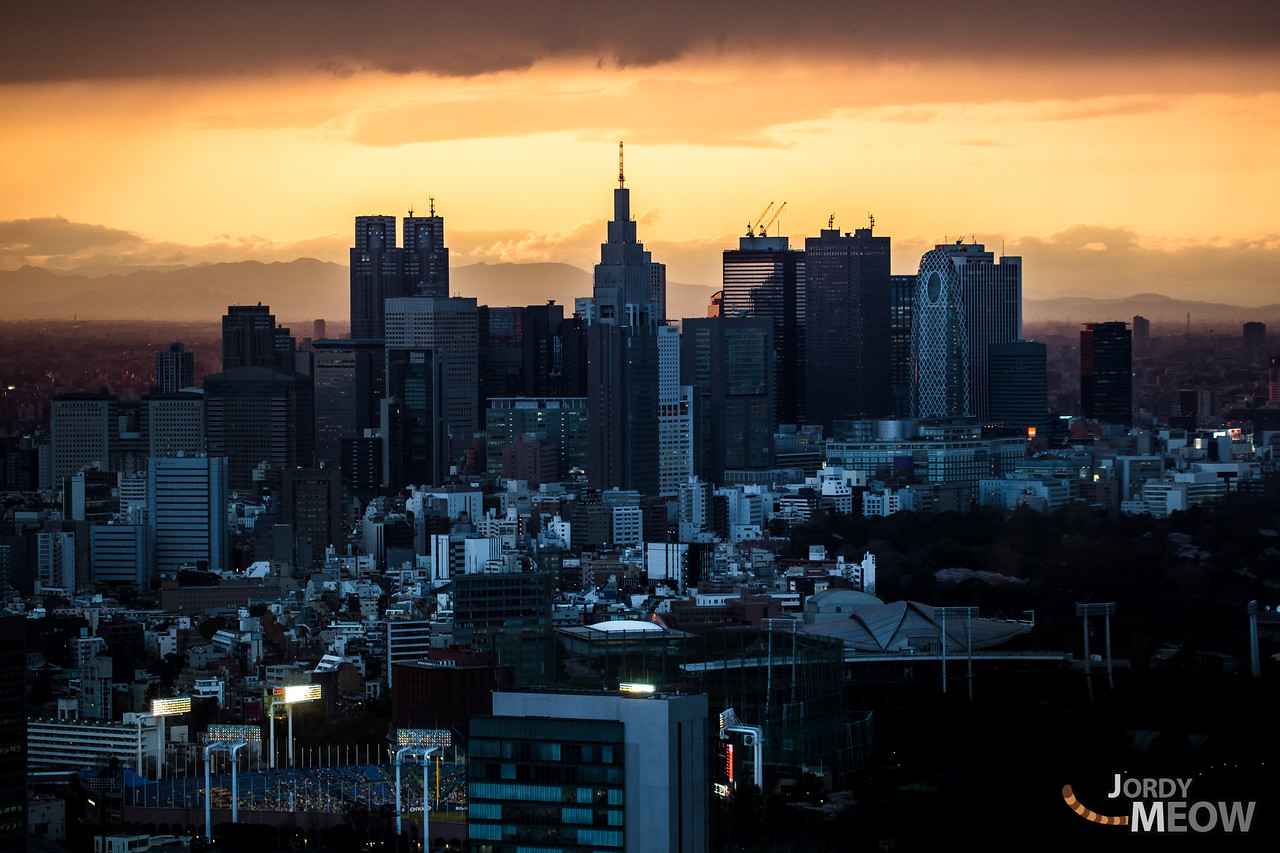 Shinjuku Skyline Orange