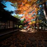 Setagaya Kannon-ji