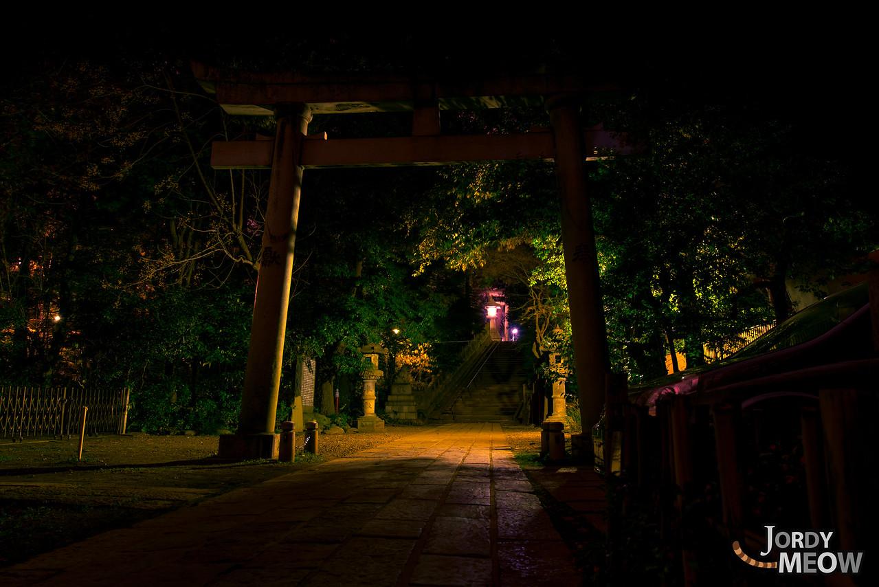 Hikawa Shrine Tori