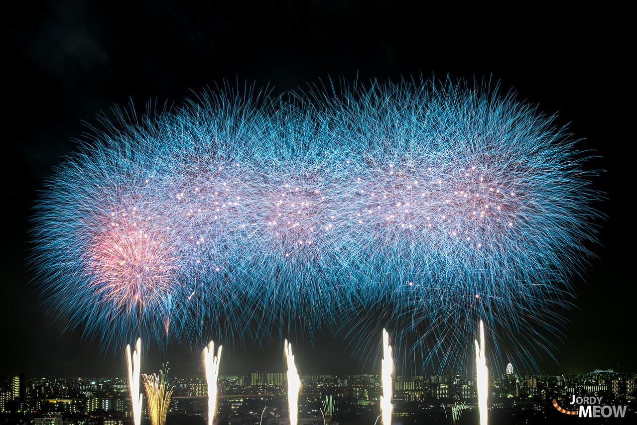 Fantastic fireworks at Edogawa River.