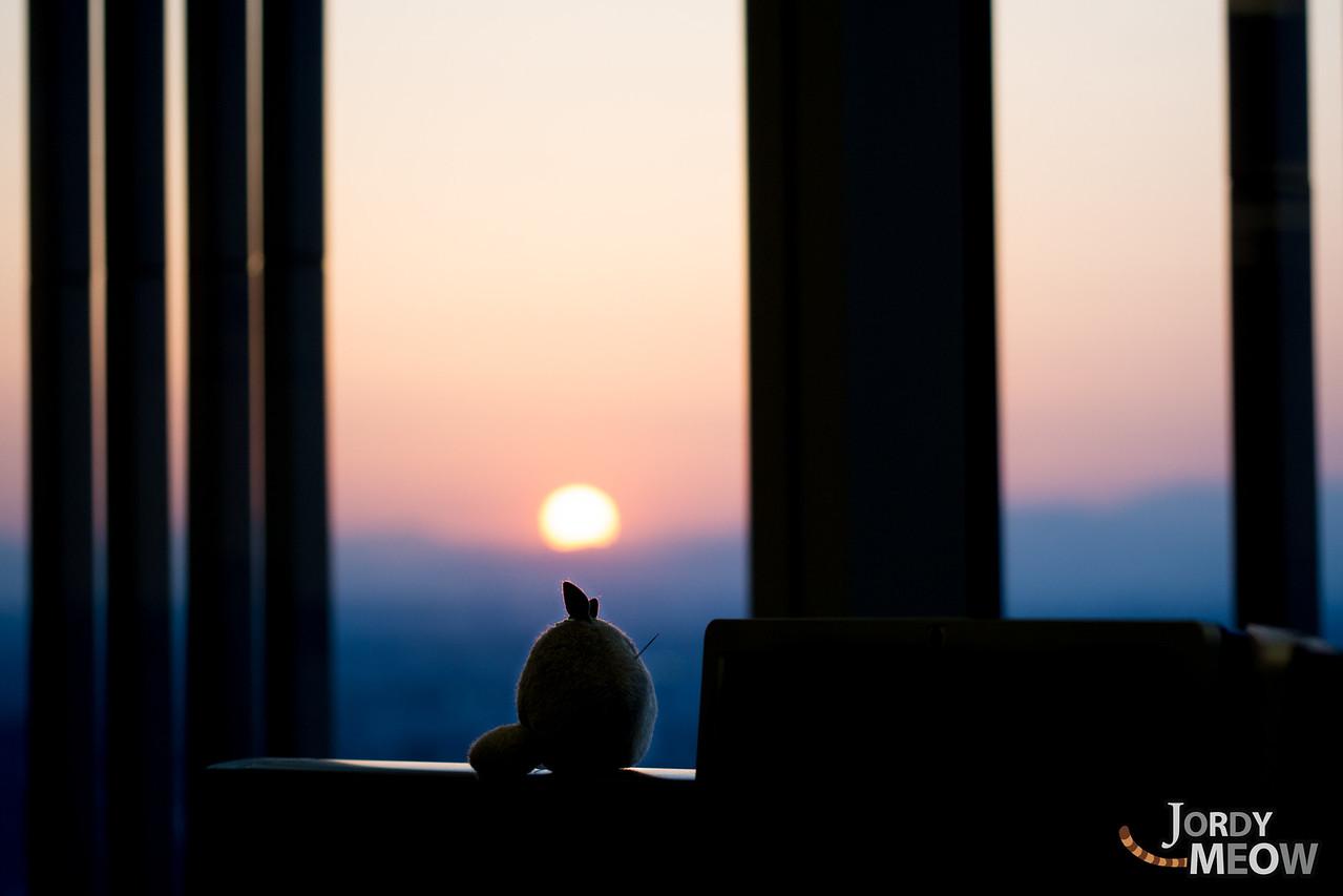 Totoro Sunset