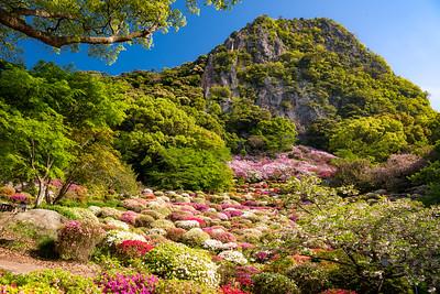 Mifuneyama Park