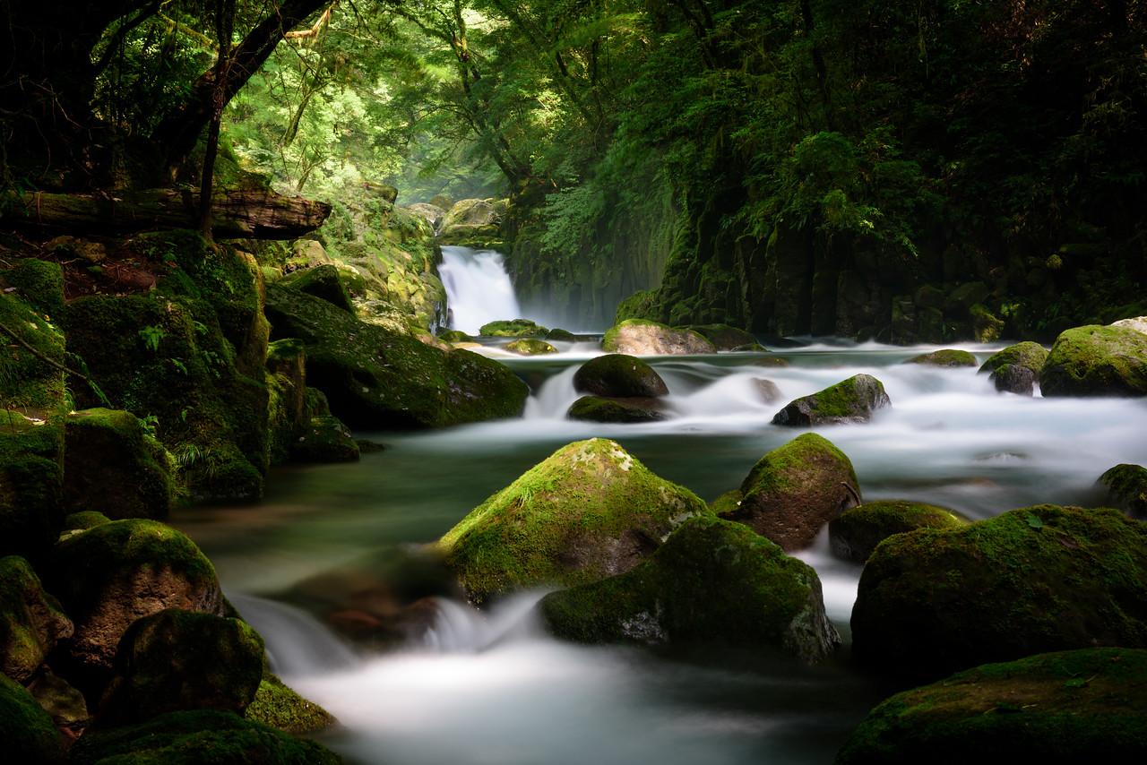 Kikuchi Valley (菊池渓谷)