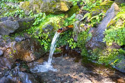 手野の名水