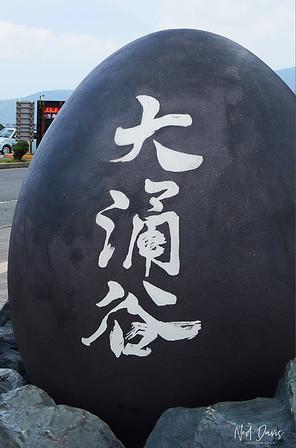Ōwakudani Black Egg