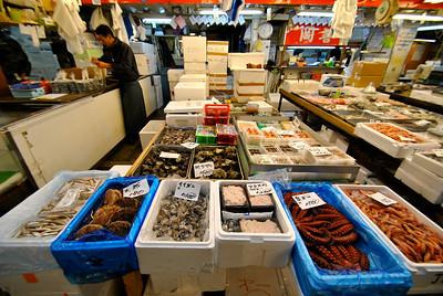 Japan - Tokyo Fish Market