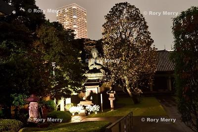 Tennoji Temple Buddha Yanaka Tokyo by moonlight