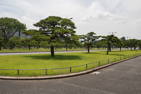 Colors, Imperial Palace Garden, Tokyo
