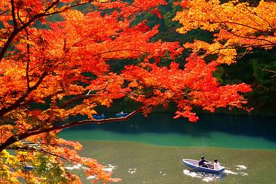 Autumn Colours in Kyoto
