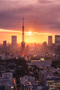 Tokyo Tower and urban skyline during golden hour