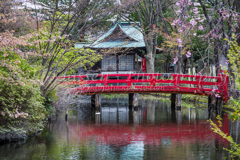 A Japanese garden with red gate and bridge in the port of Aomori, northern Japan, Tōhoku region.