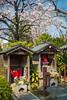 A Japanese shrine near the Sensoji Temple in Asakusa, Tokyo, Japan.