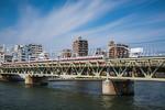 A train on a bridge over the Sumida River in Sumida Park, Asakusa, Tokyo, Japan, Asia.