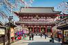 Pagoda traditional architecture of the Sensoji Temple in Asakusa, Tokyo, Japan.