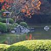 Autumn at Rikugien Garden Tokyo