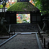 Honen-in Temple Kyoto