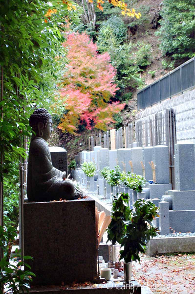 Autumn at Nanzen-ji Temple