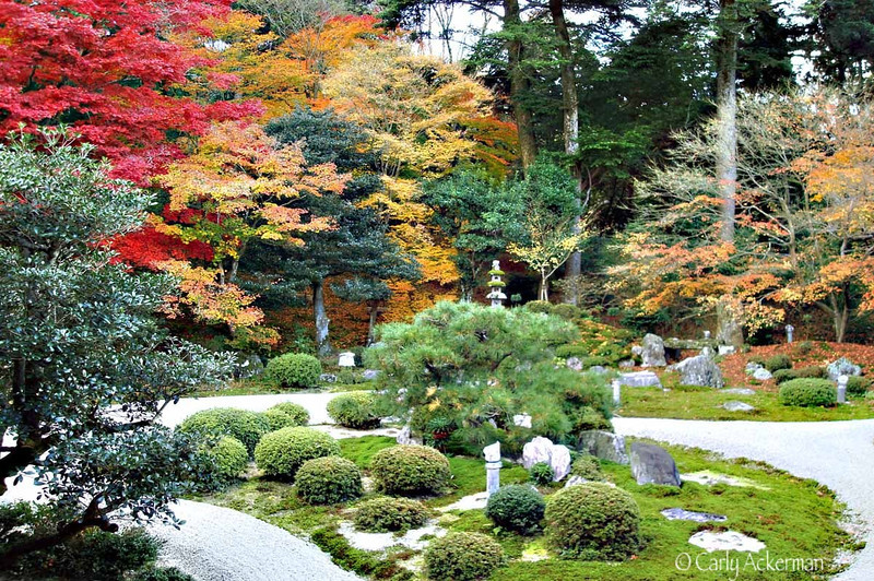 Autumn Garden Manshu-in Temple
