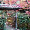 Arashiyama Gate