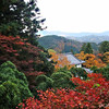An Autumn View from Kurama-dera Temple