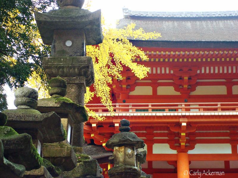 Autumn Kasuga Taisha