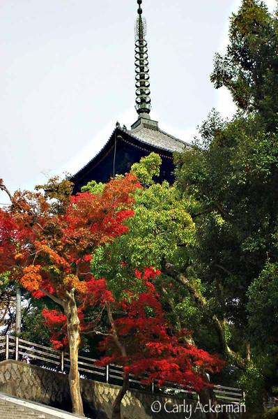 Autumn in Takayama