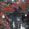 Autumn at Manshu-in