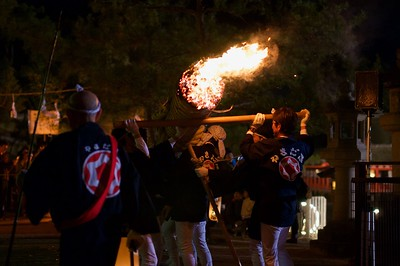 Groups carrying these giant torches made from pine
