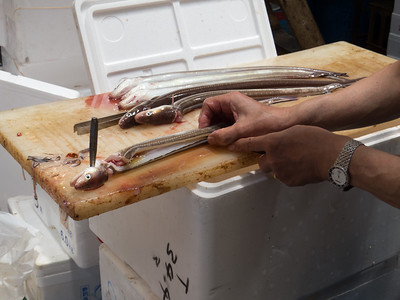 Day 3: Tsukiji Fish Market