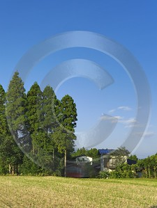 Gotemba Japanese Country Side In Autumn Fine Arts Photography Spring Island Fine Art Landscape - 016482 - 18-10-2008 - 4189x5577 Pixel