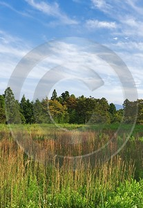 Gotemba Japanese Country Side In Autumn Stock Photos Image Stock Fine Art Landscape - 016484 - 18-10-2008 - 4193x6090 Pixel