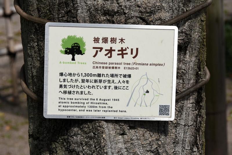 Atomic tree, Peace Memorial Park, Hiroshima, Mon 1 April 2019 1.
