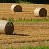 Rolled Straw Bales