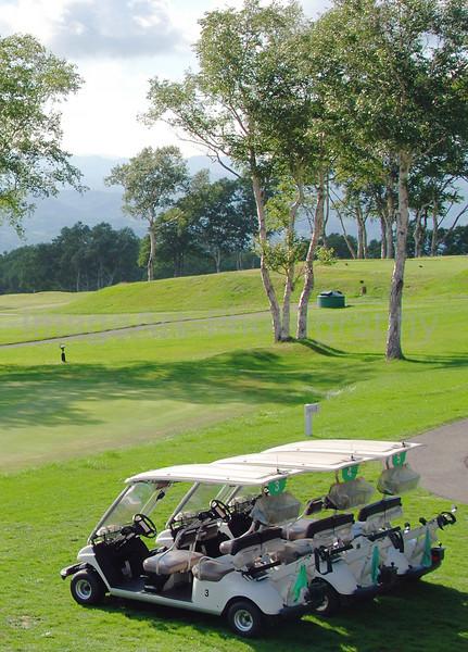 Three golf carts awaiting customers