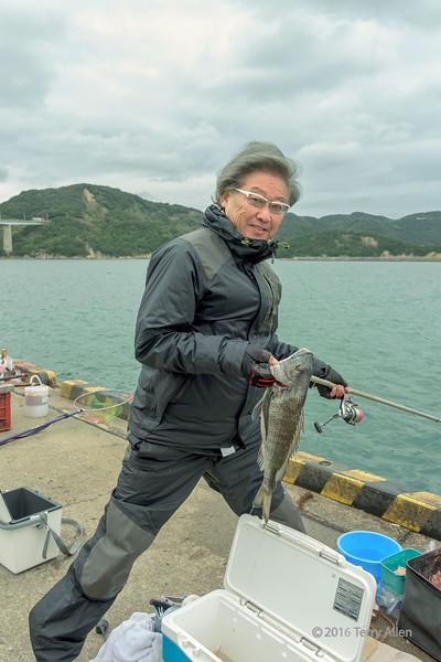 Nice-fish