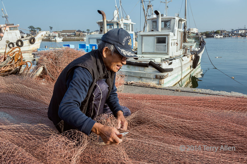 """Repairing the nets (best larger to see his hands)<br /> <br /> The worn nets have taken on a pinkish colour, fitting in with the pink theme for today.<br /> <br /> Photo just taken a few minutes ago at the harbour at Naruto on Shikoku Island, Japan.  I had a short conversation with this fisherman who said it was OK to take his picture.  He said that repairing the nets wasn't hard work on the land, since he'd been doing it all his life, but when he had to repair the nets out on the boat on the open ocean, it could be very difficult.<br /> <br /> 26/10/14  <a href=""""http://www.allenfotowild.com"""">http://www.allenfotowild.com</a>"""