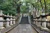 Stone lanterns along the path leading to the tomb of Tokugawa Ieyasu.