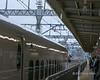 Shinkansen-conductor,-bound-for-Tokyo,-Shizuoka-Station,-Japan