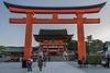 Giant torii gate at sunrise